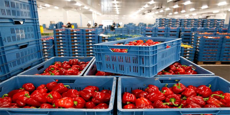 Картинки по запросу комплекс сельхозпродукции