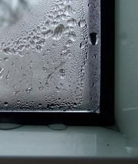 Конденсат на окнах — один из признаков недостаточного воздухообмена в помещениях